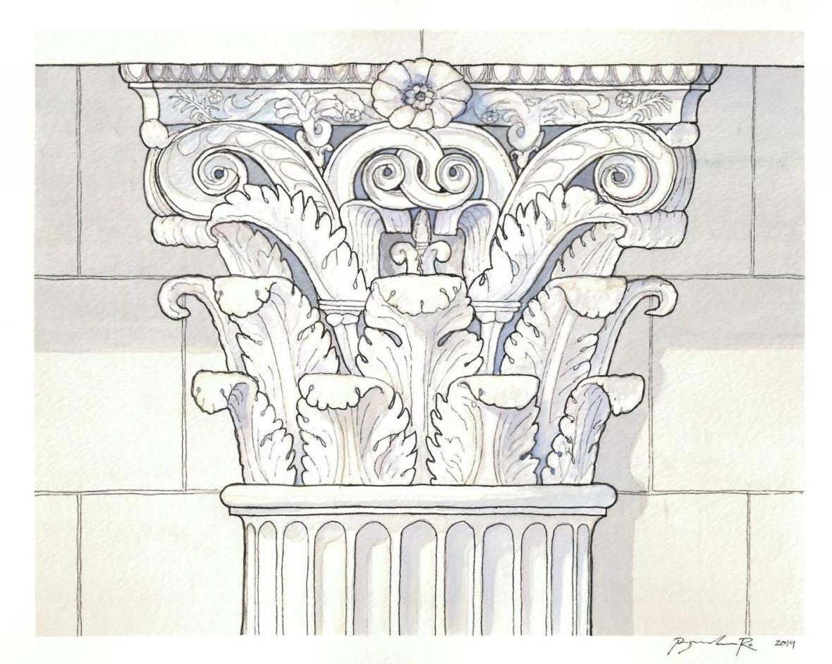 B.Ro_Castor-Pollux-Capital_watercolor